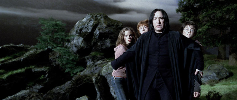 Snape-protecting-the-trio